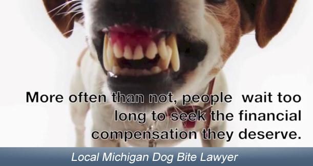 dog-bite-attorney-mi